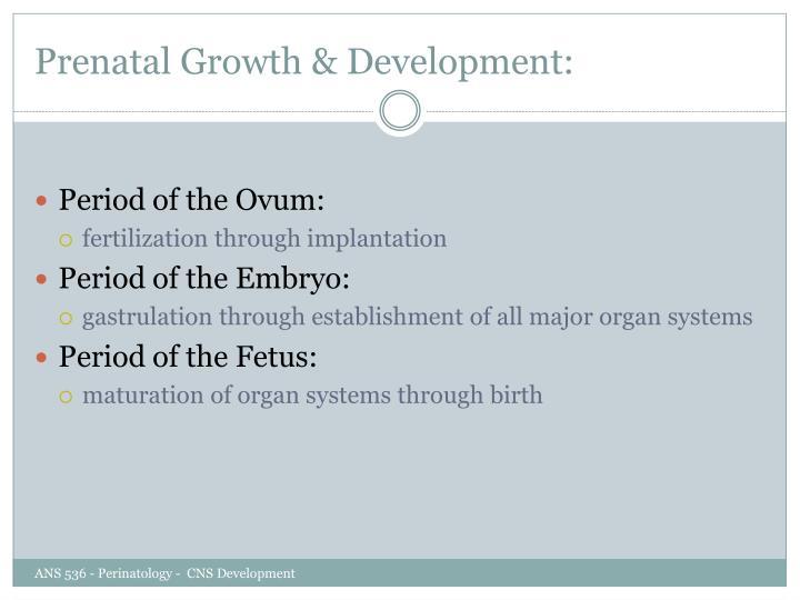 Prenatal Growth & Development: