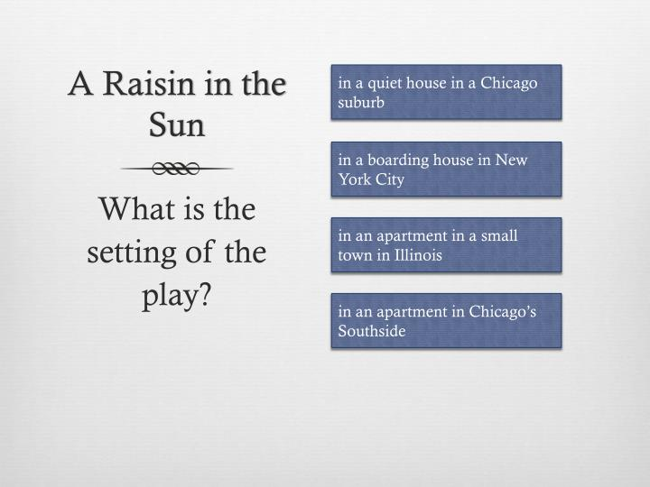 A raisin in the sun1