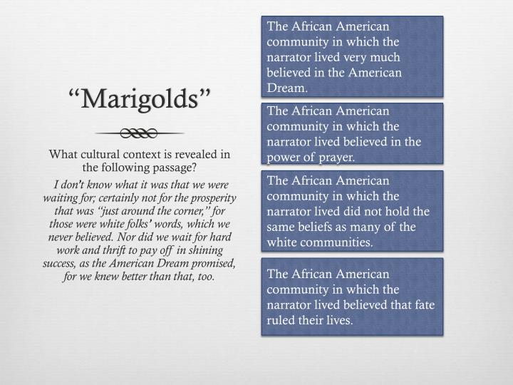 The African American community in which the narrator lived very much believed in the American Dream.