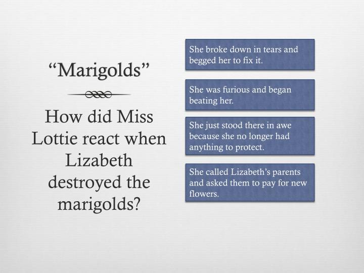"""Marigolds"""
