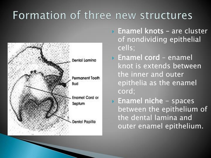 Formation of three new structures