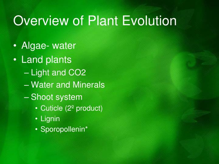 Overview of Plant Evolution