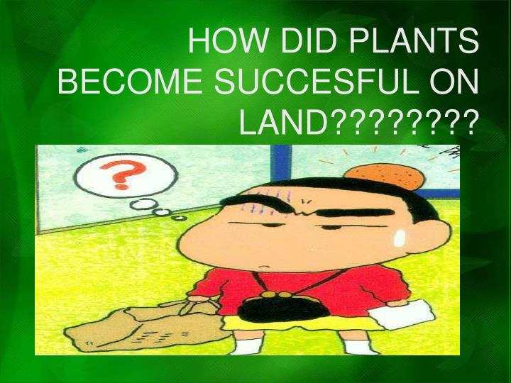 HOW DID PLANTS BECOME SUCCESFUL ON LAND????????