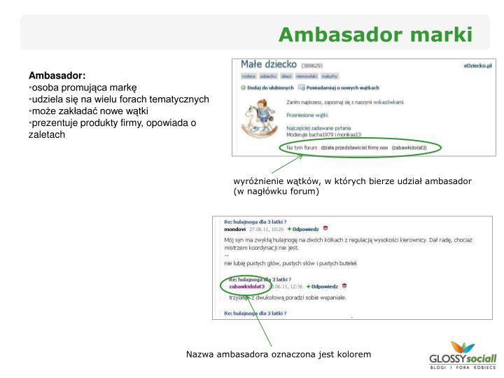 Ambasador marki