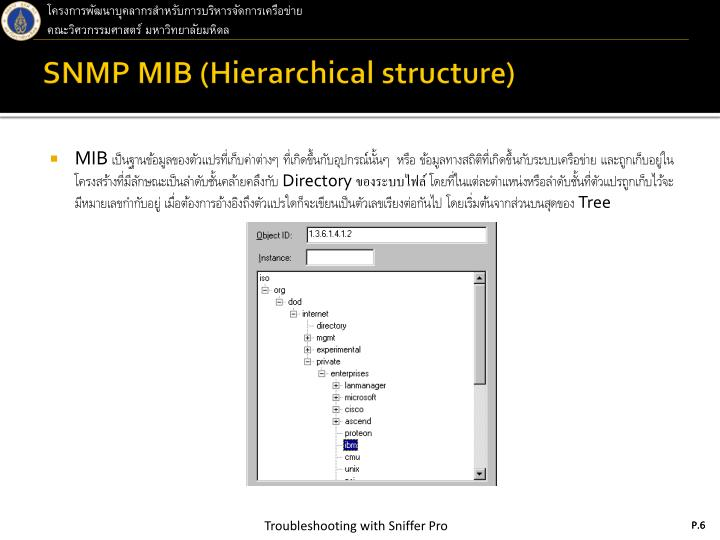 SNMP MIB (Hierarchical structure)
