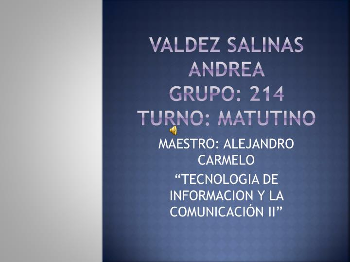 VALDEZ SALINAS ANDREA