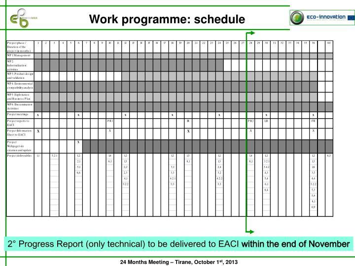 Work programme: schedule