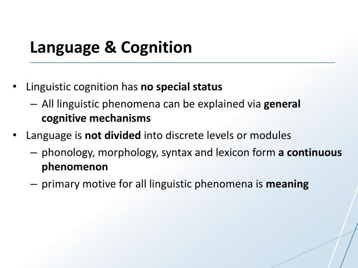 Language cognition