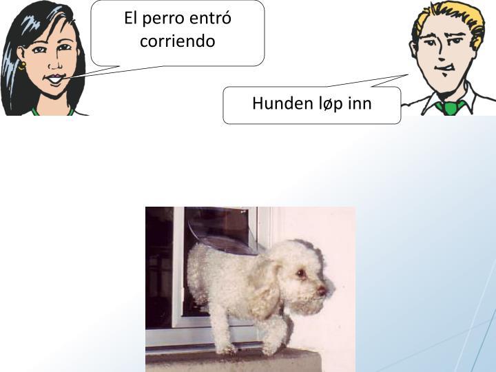 El perro entr
