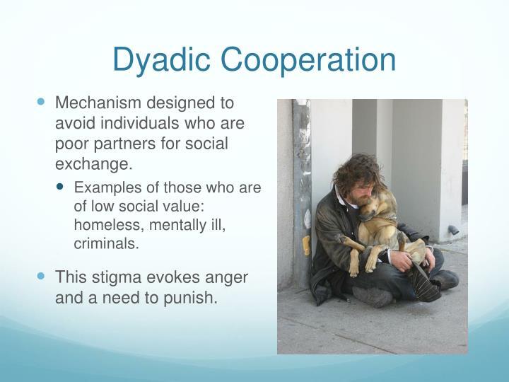 Dyadic cooperation