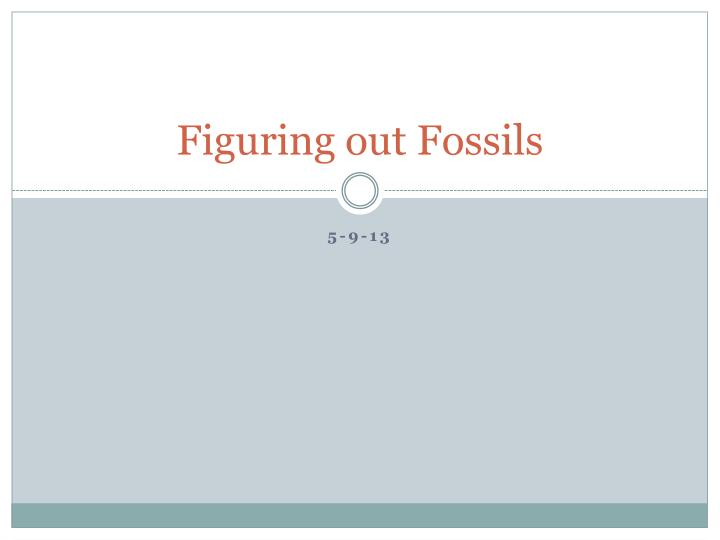 figuring out fossils n.