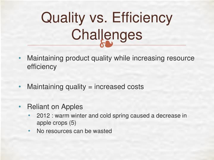 Quality vs. Efficiency Challenges