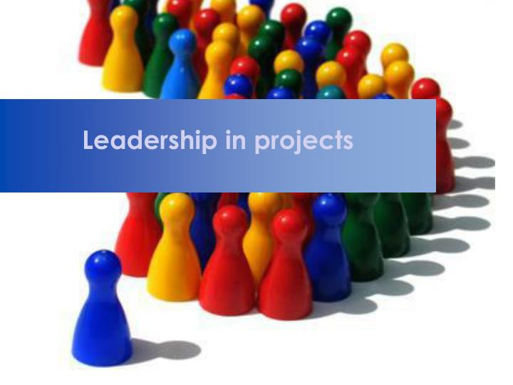 leadership in projects n.