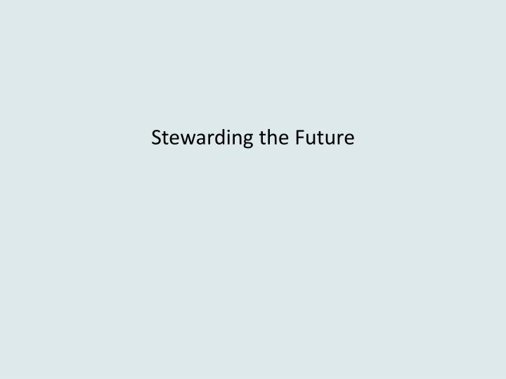 stewarding the future n.