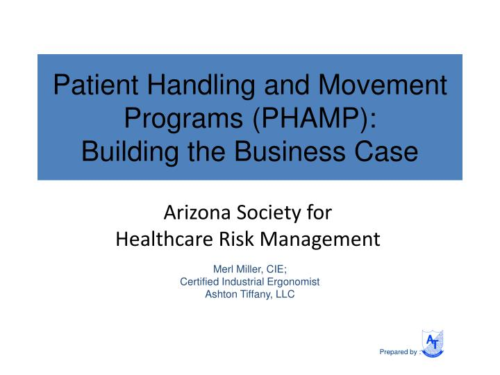 patient handling and movement programs phamp building the business case n.
