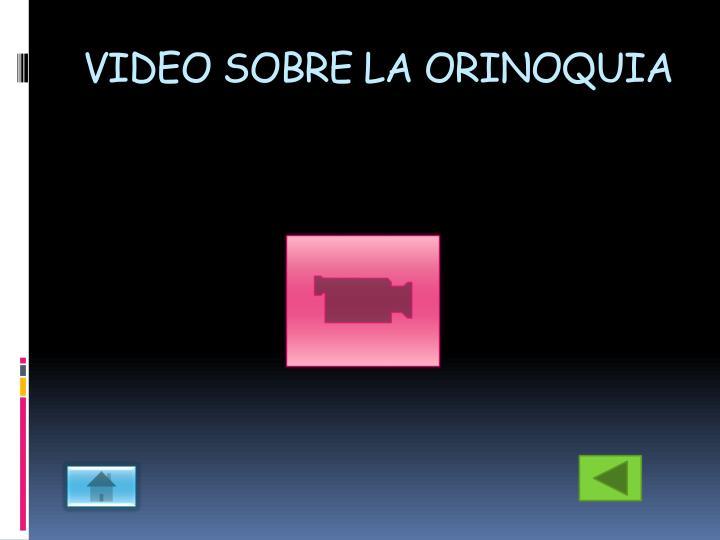 VIDEO SOBRE LA ORINOQUIA