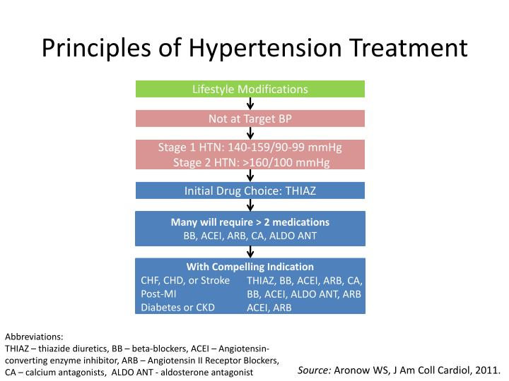 Principles of Hypertension Treatment