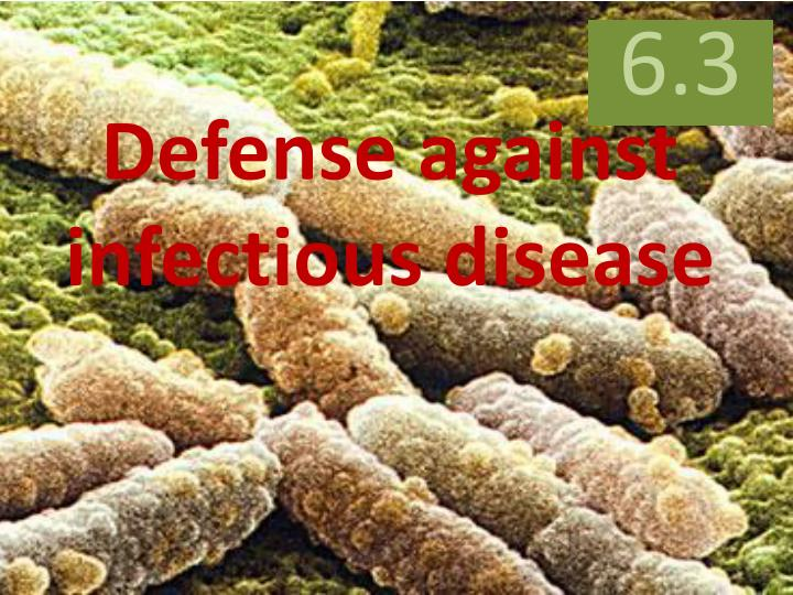 defense against infectious disease n.