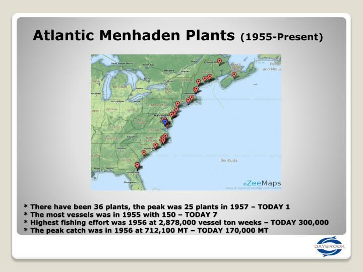 Atlantic Menhaden Plants