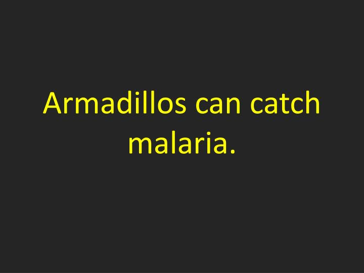 Armadillos can catch malaria.