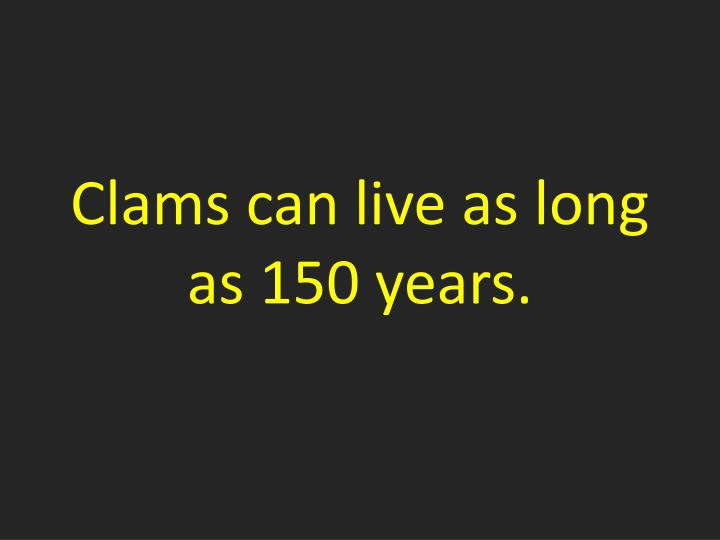 Clams can live as long as 150 years.