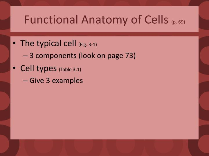 Functional anatomy of cells p 69