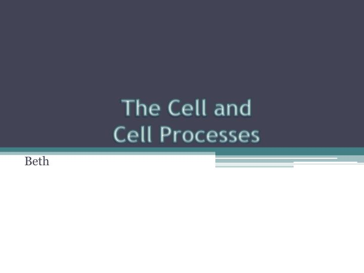 The cell and cell processes