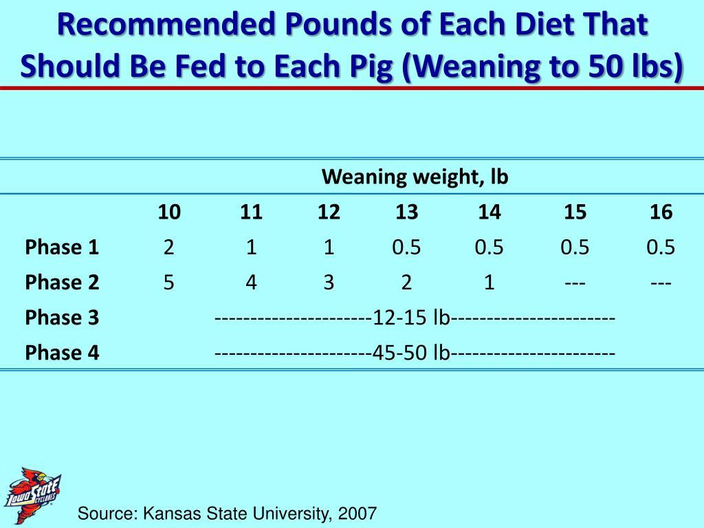 "PPT - Livestock Feeding AnS 320 "" Swine Feeding and"