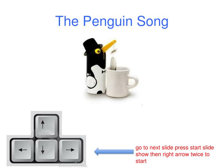 the penguin song n.
