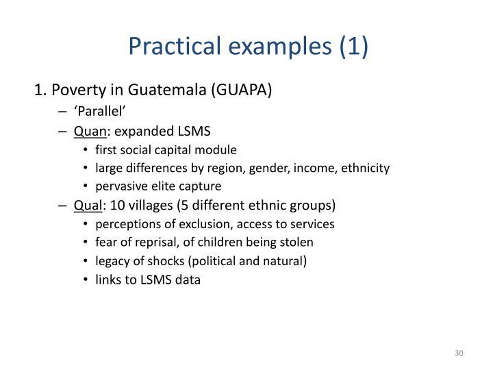 1. Poverty in Guatemala (GUAPA)