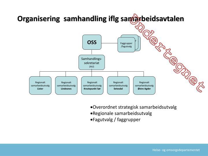 Organisering samhandling iflg samarbeidsavtalen