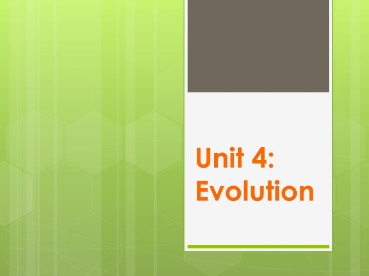 unit 4 evolution