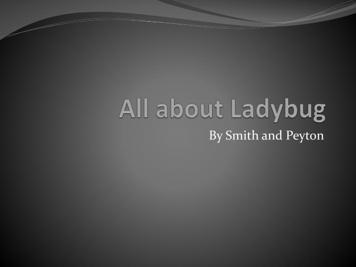 all about ladybug n.