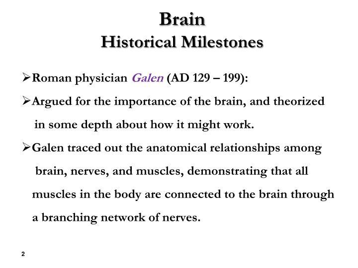 Brain historical milestones