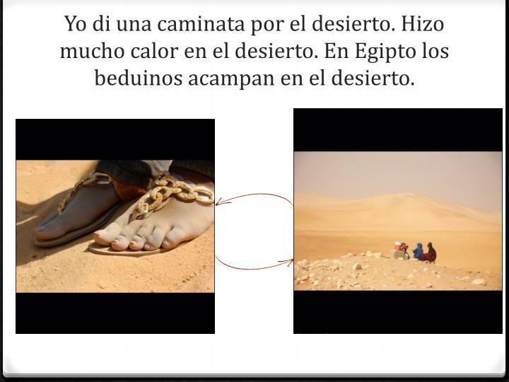 Yo di una caminata por el desierto. Hizo mucho calor en el desierto.