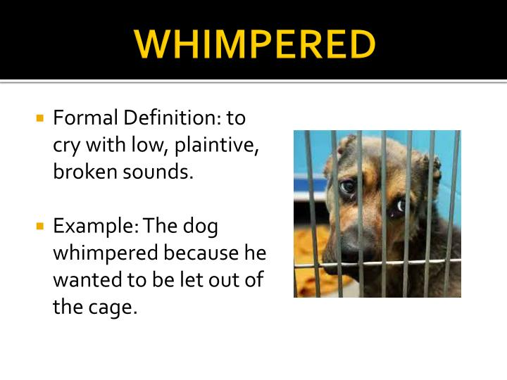 WHIMPERED