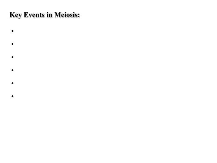 Key Events in Meiosis: