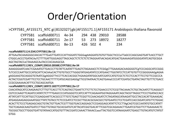 Order/Orientation