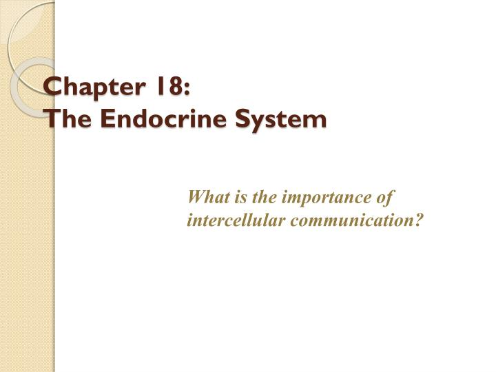 chapter 18 the endocrine system n.