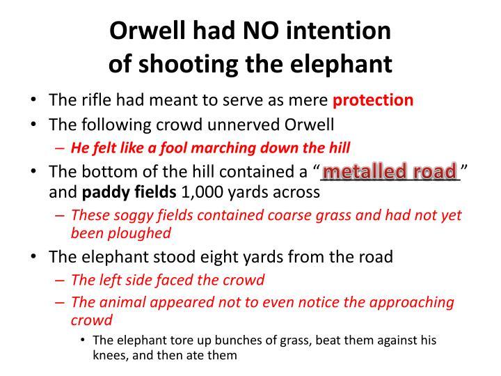 Orwell had NO intention