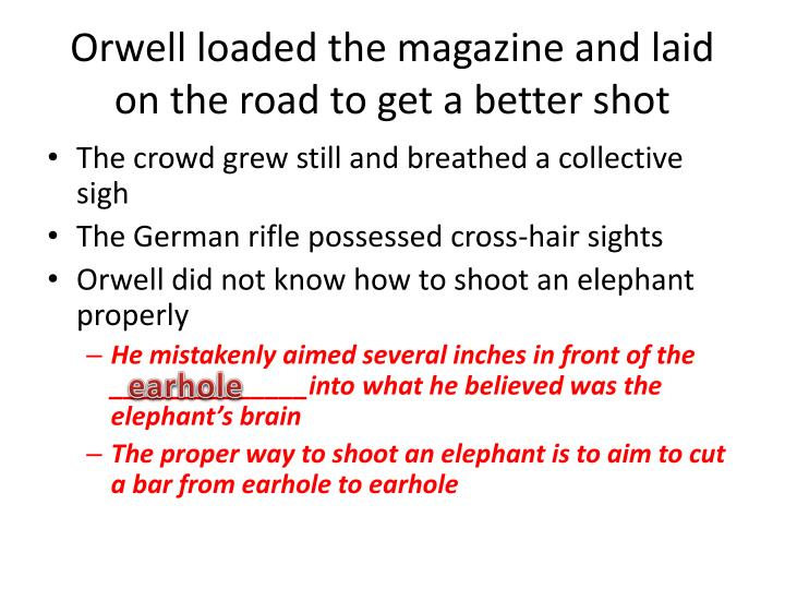 Orwell loaded the magazine and laid on the road to get a better shot