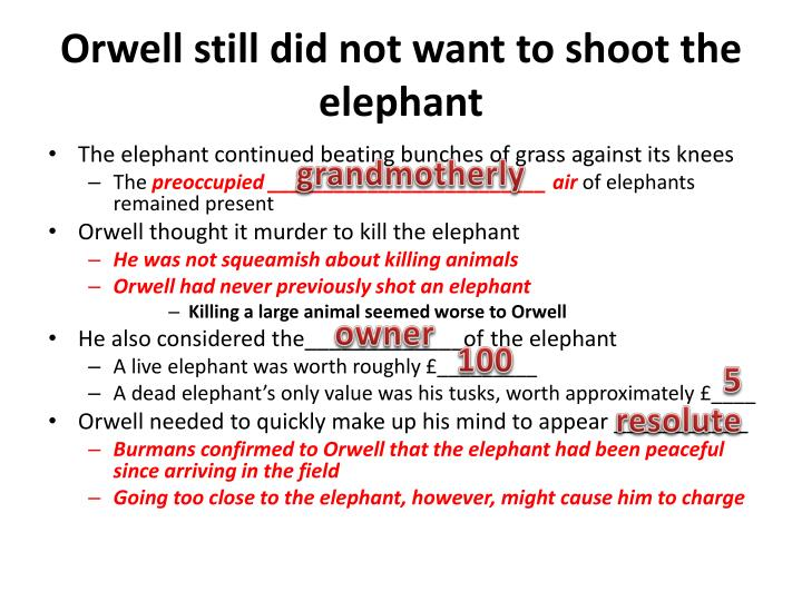 Orwell still did not want to shoot the elephant