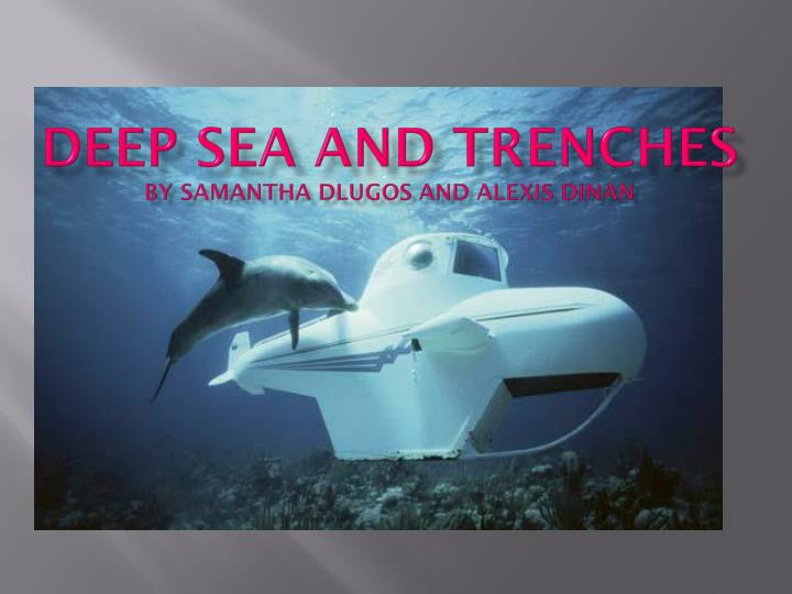 deep sea and trenches by samantha dlugos and alexis dinan n.