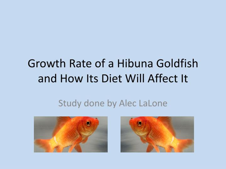 growth rate of a hibuna goldfish and how its diet will affect it n.