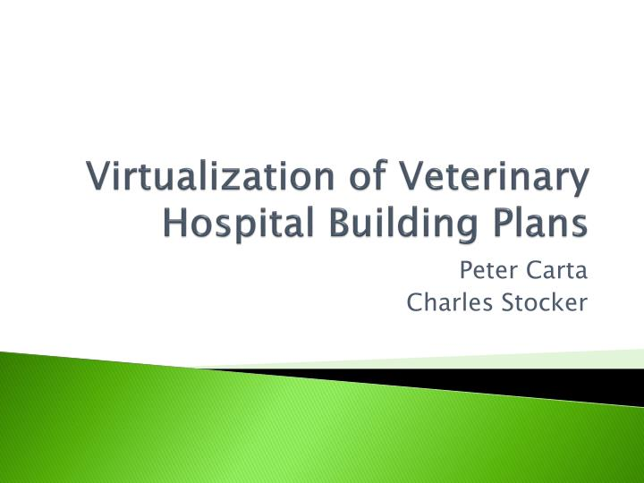 virtualization of veterinary hospital building plans n.