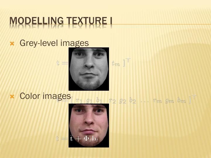 Modelling texture I