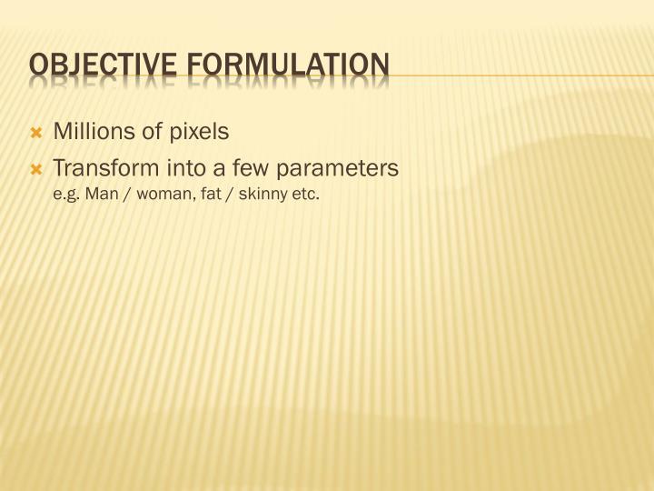 Objective Formulation