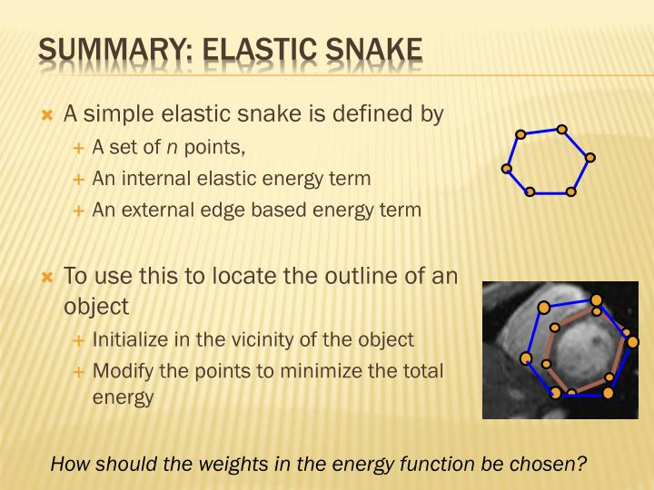 Summary: elastic snake