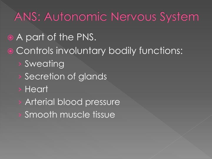 ANS: Autonomic Nervous System