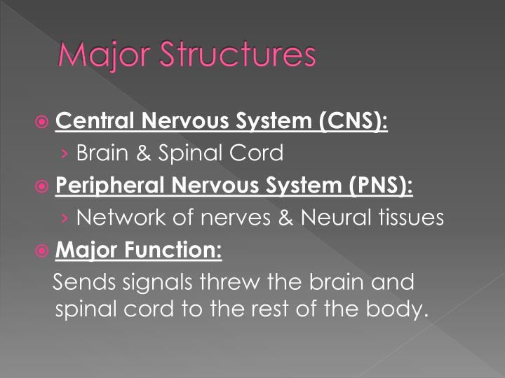 Major structures